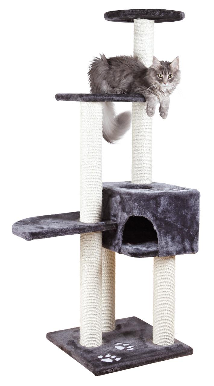 kratzb ume bretter klettern kratzen spielen hey. Black Bedroom Furniture Sets. Home Design Ideas